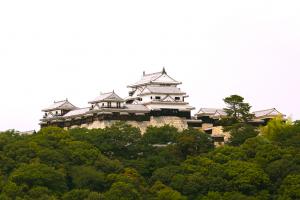 松山城 Matsuyama castle